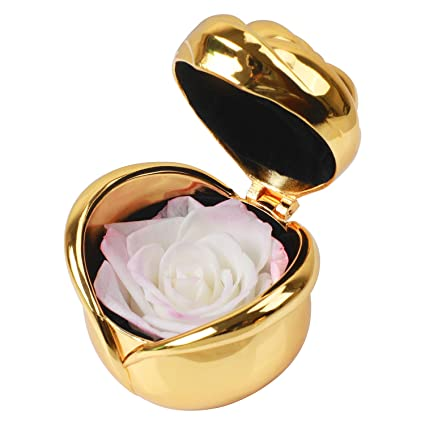 Preserved Roses Real Rose Popular Gifts For Women Handmade Present Upscale