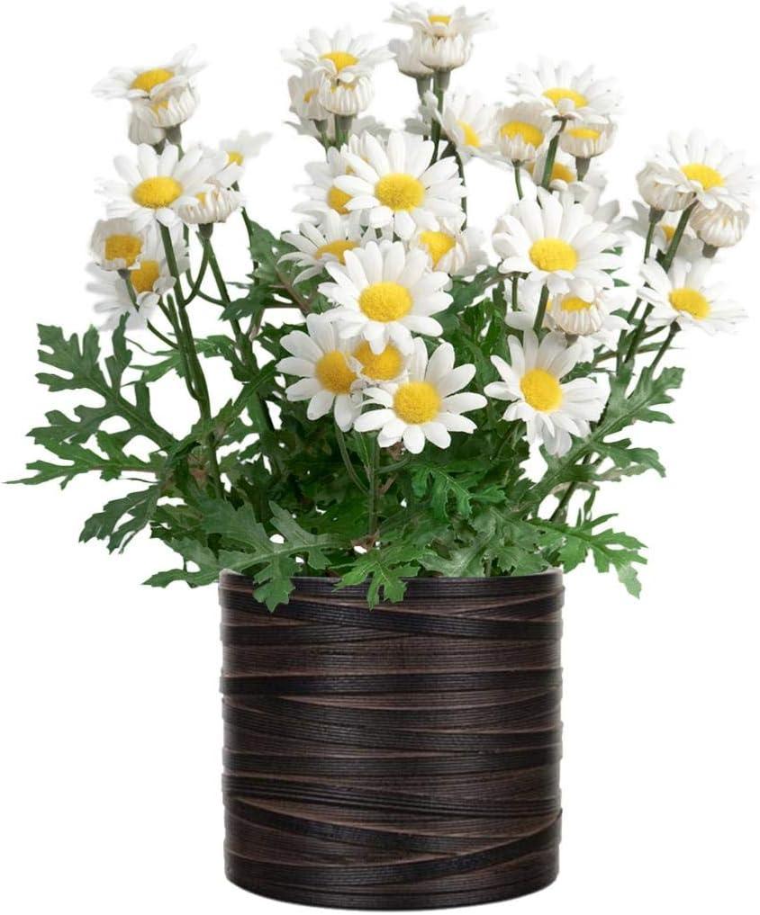 Artificielles.com Marguerite Artificielle en Pot H 30 cm