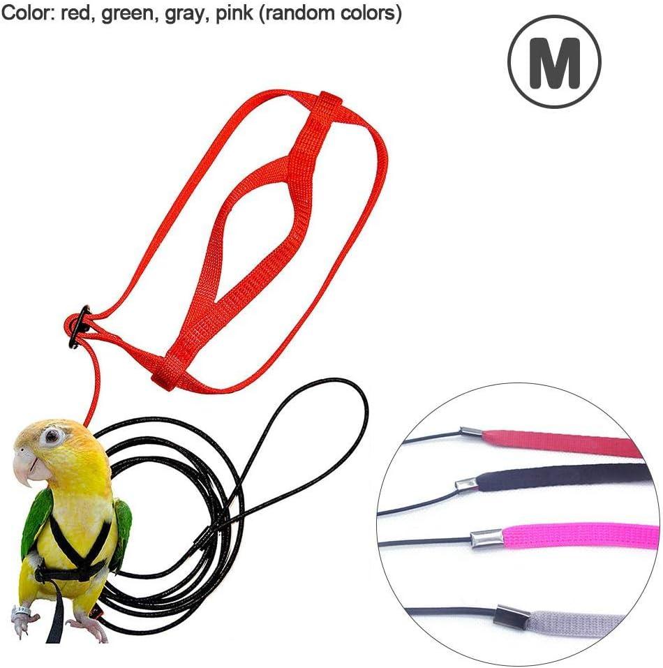 foyar - Arnés para pájaros y Cuerda, Resistente a mordeduras, para pájaros, Loros, papagayos Grises, cacatúas, Aros, periquitos, periquitos de ninfas (1 Unidad, Color Aleatorio) Thrifty, Rojo, Medium