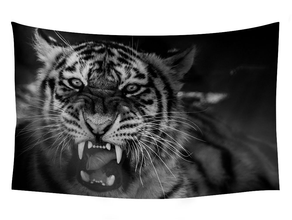 animal tiger growling - Wall Tapestry Art For Home Decor Wall Hanging Tapestry 90x60 Inches Black and White