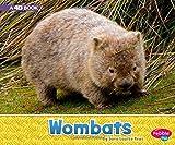 Wombats: A 4D Book (Australian Animals)