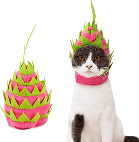 DOGCATMM Divertido Gato Pitaya Sombrero Perro Halloween Fruta ...
