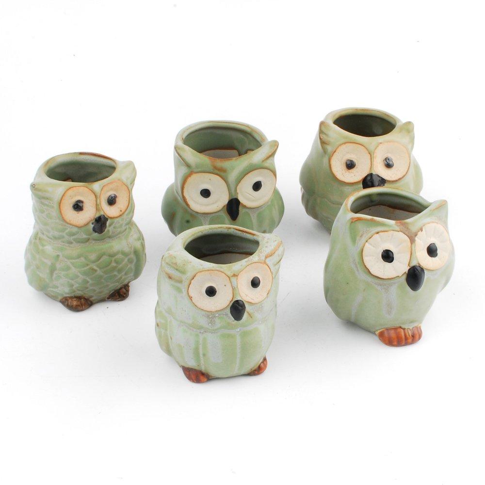 NWFashion Flower Pot Succulent Plants Cute Owl Animal Flower Container Decoration Set, Green by NWFashion