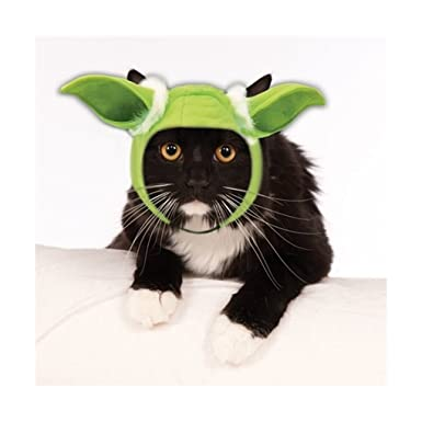Amazon.com Pet Yoda Cat or Dog Ears - Costume Accessory - 2 sizes for Dogs 1 Size for Cats Clothing  sc 1 st  Amazon.com & Amazon.com: Pet Yoda Cat or Dog Ears - Costume Accessory - 2 sizes ...