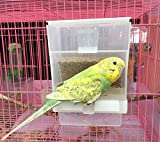 Old Tjikko Parrot Automatic Feeder,No-Mess Bird