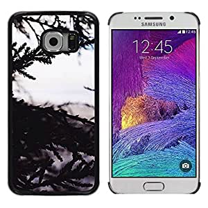 Exotic-Star ( Tree Nature Sea View ) Fundas Cover Cubre Hard Case Cover para Samsung Galaxy S6 EDGE / SM-G925 / SM-G925A / SM-G925T / SM-G925F / SM-G925I