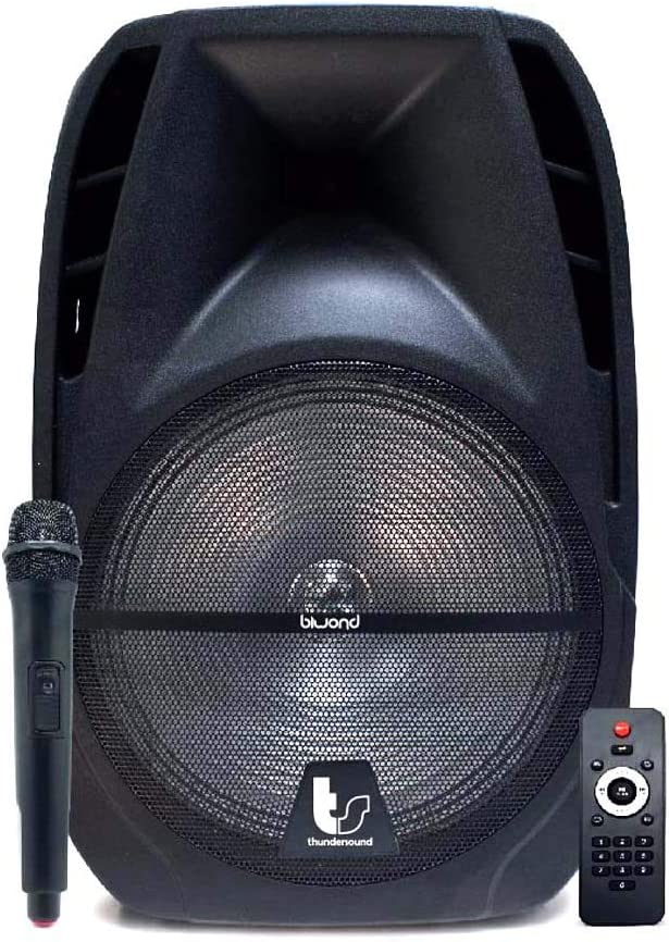 "Biwond Thundersound Altavoces Autoamplificados 250W TS8"" (Bluetooth, USB/SD/AUX/Jack/, Micrófono inalámbrico, RMS 110W, Radio, LCD, Echo, Rec) – Negro"