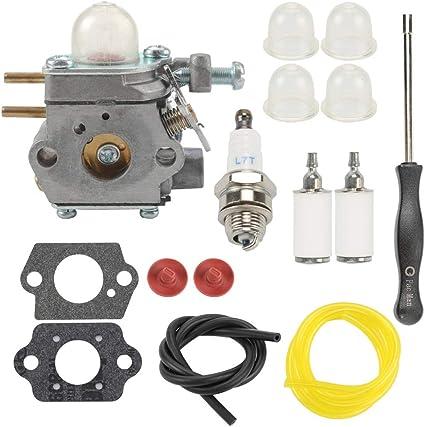 Carburetor For Bolens BL110 BL160 BL425 Murray M2500 M2510 WT-1116 Carb And Tool