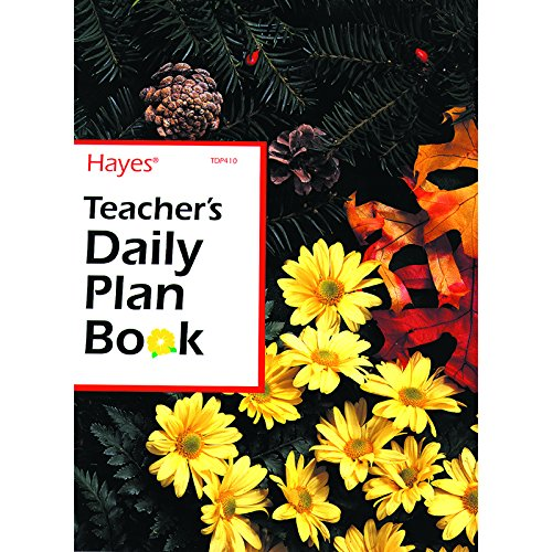 FLIPSIDE TEACHERS DAILY PLAN BOOK 40 WEEKS (Set of 12) by Flipside