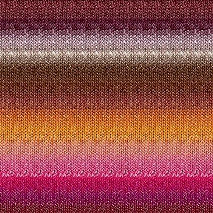 Amazon.com: Noro Silk Garden Lite, 2169 - Cooper-Brown-Fuchsia-Orange-Ash