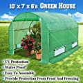 BenefitUSA Green House 10'x7'x6' Larger Walk In Outdoor canopy gazebo Plant Gardening Greenhouse