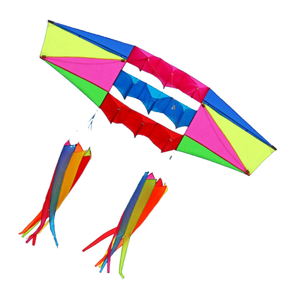 Besra Huge 98inch Single Line 3D Radar Kite with Flying Tools 2.5m Power Box Kites with 2 Windsock Tails Outdoor Fun Sports for Adults (windsock) by Besra