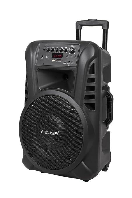 2 opinioni per AZUSA mik0135Attivo Speaker Box (con 2microfoni senza fili, SD, Bluetooth,