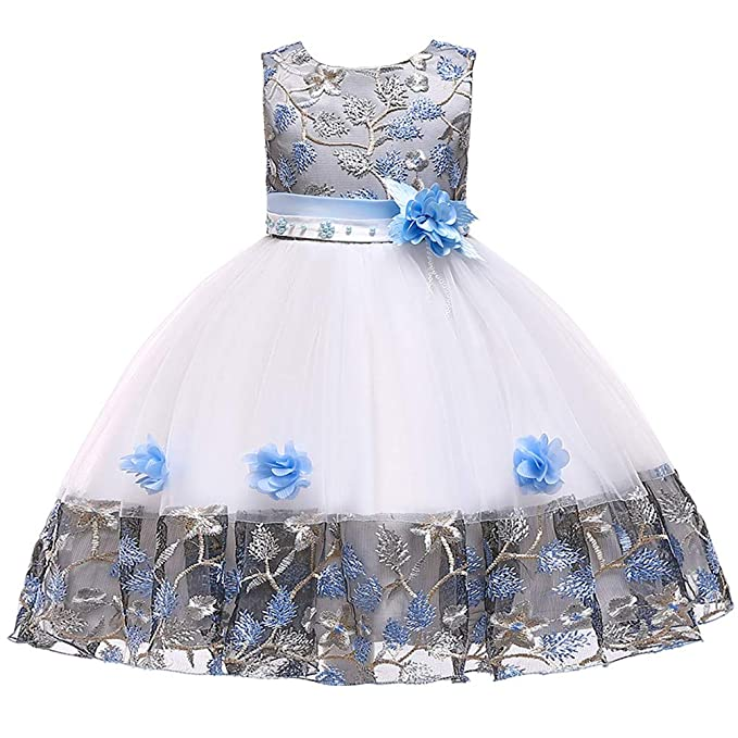 f21e45ad9f757 Amazon.com: KILO&METERS Embroidery 3D Flower Girl Dress Tulle Lace ...