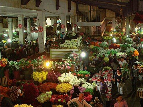 Mexico City's Markets: a Millennium of Trade]()