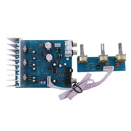 Homyl 2.1 Canales 40 W Alta Potencia Módulo de Placa de Amplificador para Sistema de Sonido Vehículo de Altavoz del Hogar: Amazon.es: Electrónica