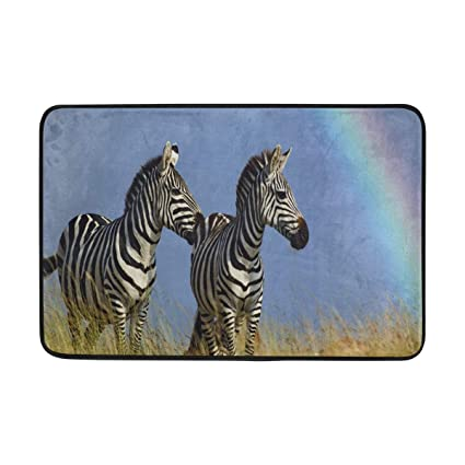 Amazon Com Mecikr Door Mats Rainbow Zebre For Bathroom Floor Home