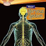 Bargain Audio Book - Your Nervous System