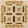 Pretty Patchwork Quilts: Traditional Patterns with Appliqué Accents