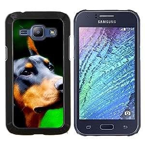 Raza Doberman Pinscher Dog canina- Metal de aluminio y de plástico duro Caja del teléfono - Negro - Samsung Galaxy J1 / J100