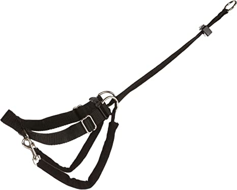 Trixie Arnés entrenam. Easy Walk Basic S, 27-36cm/20mm: Amazon.es ...