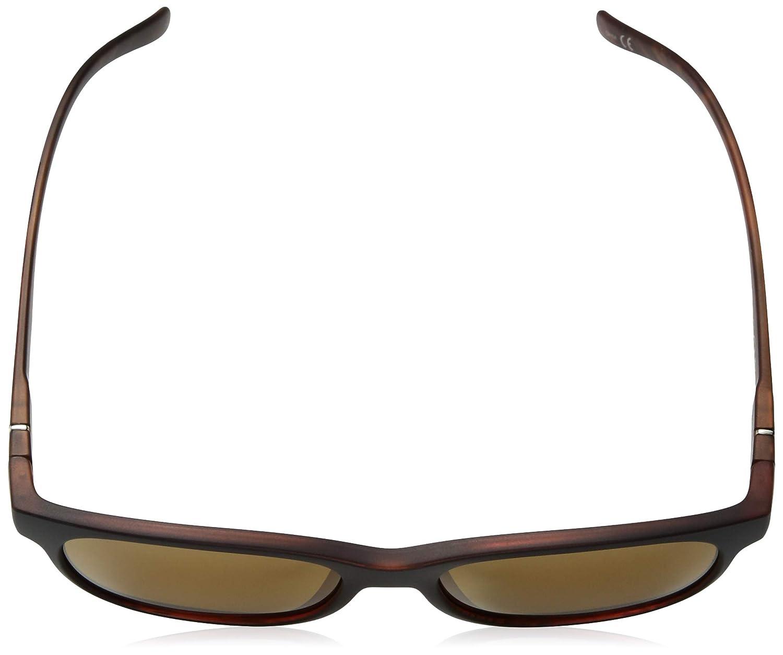 Suncloud Scene Sunglasses Womens