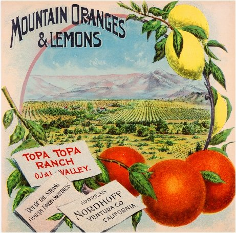 A SLICE IN TIME OJAI NORDHOFF Ventura County California TOPA TOPA Mountain Oranges and Lemons Brand Orange Citrus Fruit Crate Label Art Print Travel Advertisement Poster