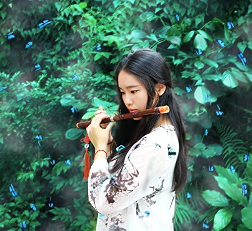Instrument Music Chinese (Flute Etudes,Chinese Bamboo Flute Music Fife Flute and Modern Alto Flute with Wholesale Bulk Plastic Champagne Flutes,Traditional Handmade Chinese Musical Instrument (G))