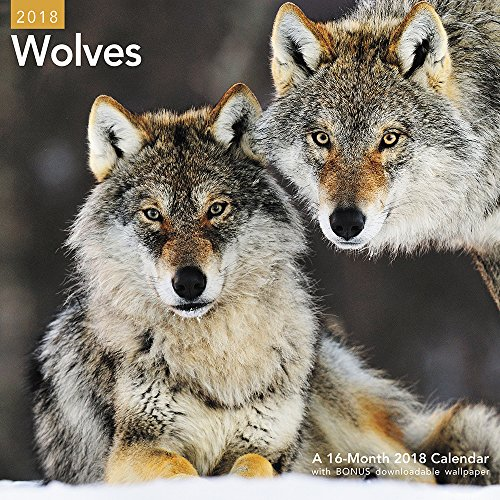 2018 Wolves Wall Calendar (Mead) cover