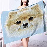 also easy Premium Extra Bath Towel Portrait of Pomeranian Dog Pet Fluffy Friendly Companion Soft Cotton Machine Washable L63 x W31.2 INCH