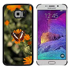 Super Stella Slim PC Hard Case Cover Skin Armor Shell Protection // M00147714 Butterfly Insect Wing Wildlife Bug // Samsung Galaxy S6 EDGE (Not Fits S6)