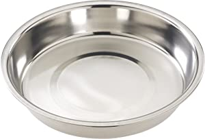 Ethical 10-Inch Stainless Steel Puppy Dish