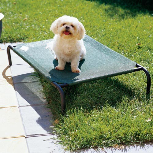 Coolaroo Elevated Pet Bed - Coolaroo Elevated Pet Bed - Green
