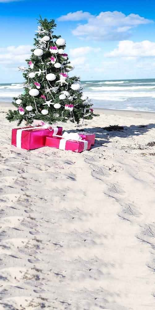 GladsBuy Seaside Christmas Tree 10' x 20' Computer Printed Photography Backdrop Christmas Theme Background LMG-184 by GladsBuy