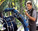 Chris Pratt Jurassic World Signed 8x10 Photo Certified Authentic PSA/DNA