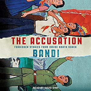 The Accusation Audiobook