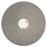 NuoStar 6 inch Grit 80 Diamond Coated Flat Lap Lapping Lapidary Wheel Disc Density Glass Jewelry Polishing Tool Grinding Sharpening Metal Back Half Inch Arbor Hole 6G80