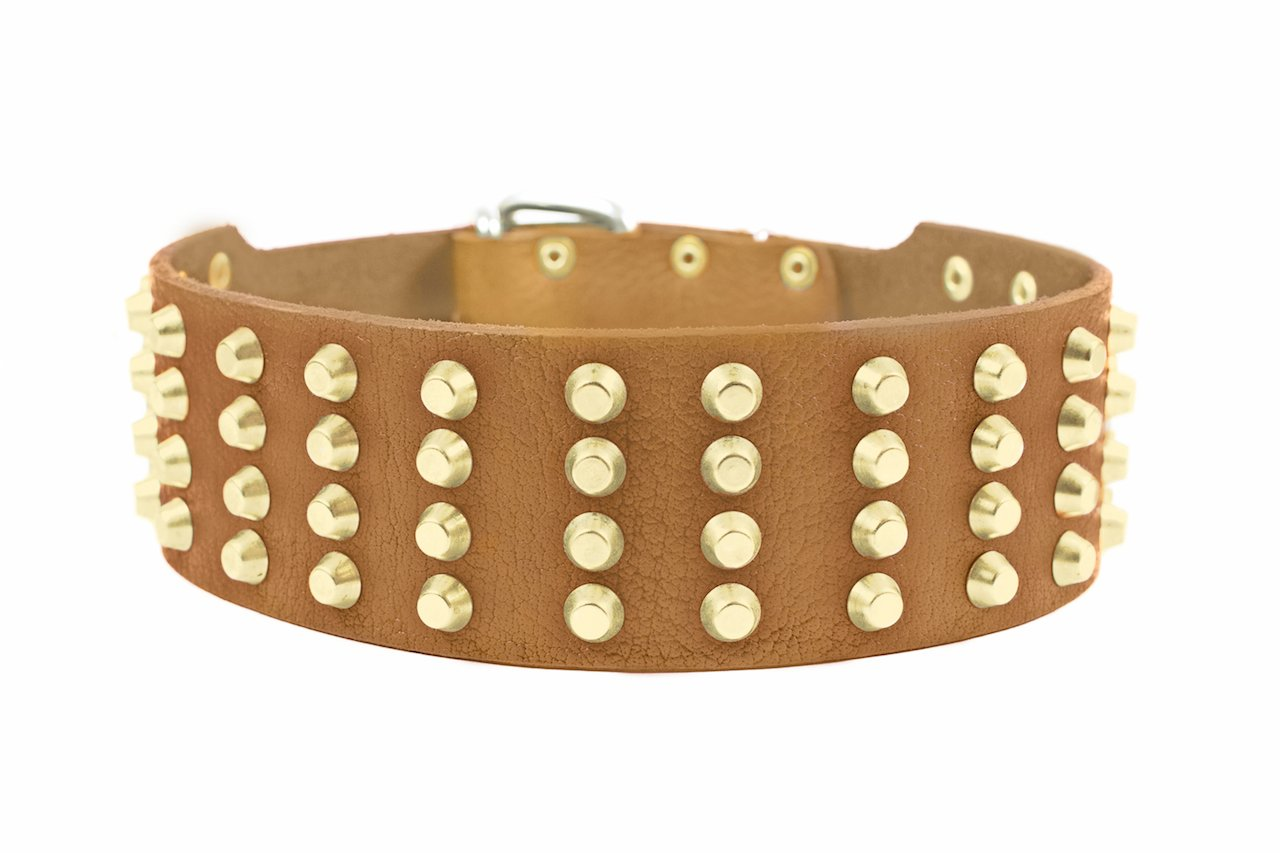 Dean and Tyler  4 ROW STUDS  Dog Collar With Solid Brass Hardware And Nickel Buckle Tan Size 66cm by 6cm Width Fits Neck Size 61cmes to 71cmes.