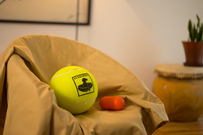 K9 Ballistics Durable Chew Resistant Dog Throw Blanket- Dog Couch Protector - Ballistic Fabric (72''x52'', Tan) by K9 Ballistics