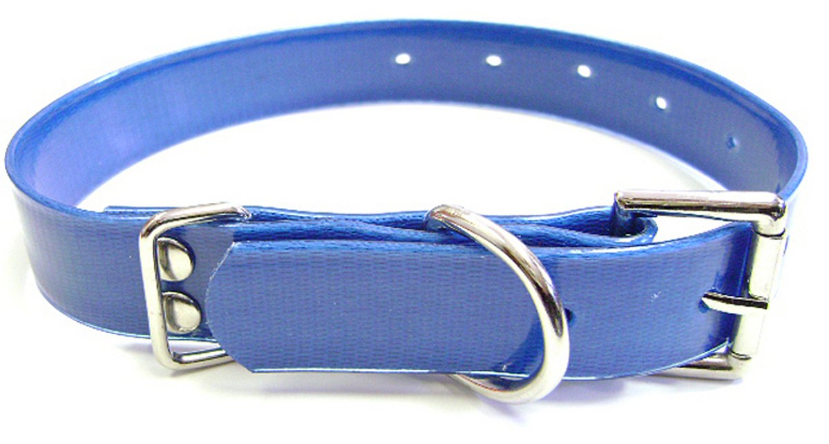bluee 3 4\ bluee 3 4\ Hamilton Plastic Coated Nylon Webbing Dog Collar, bluee, 3 4-Inch by 18-Inch