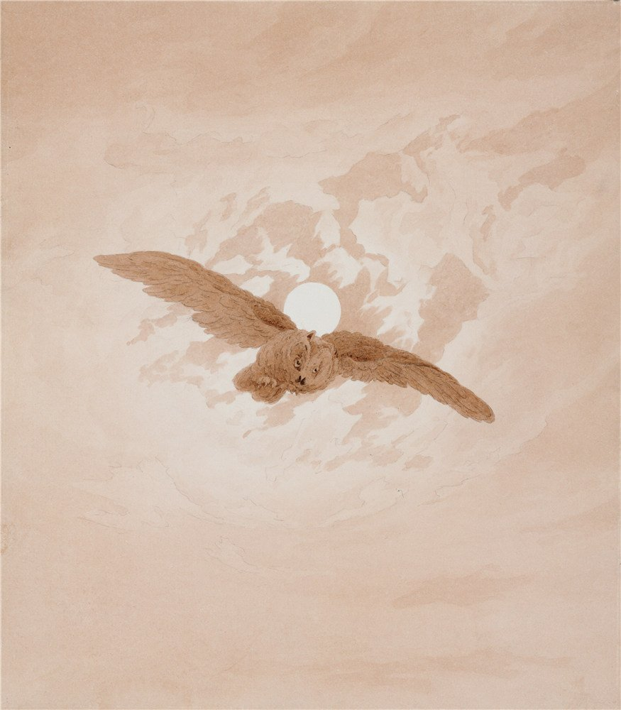 High Quality Polyster Canvas ,the Reproductions Art Decorative Prints On Canvas Of Oil Painting 'Owl Flying Against A Moonlit Sky,1837 By Caspar David Friedrich', 18x21 Inch / 46x52 Cm Is Best For Study Gallery Art And Home Gallery Art And Gifts by CaylayBrady