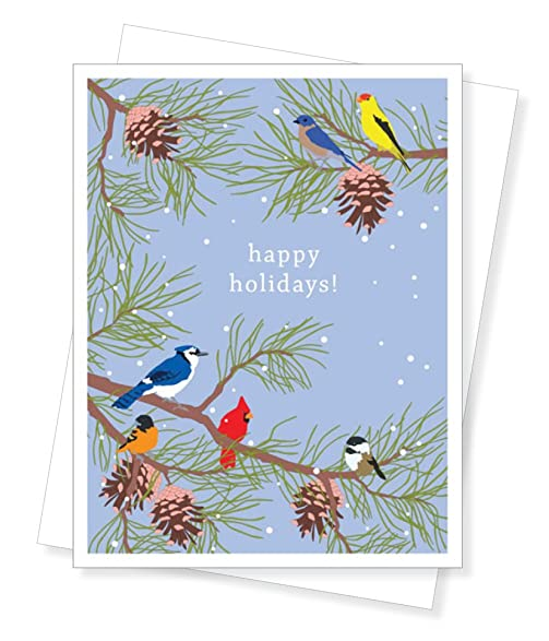 holiday birds christmas cards set of 10 greeting cards