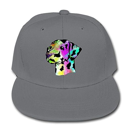 Amazon.com  Moniery Colored Dalmatian Dog Plain Snapback Cap Solid ... f662ad7d3f2