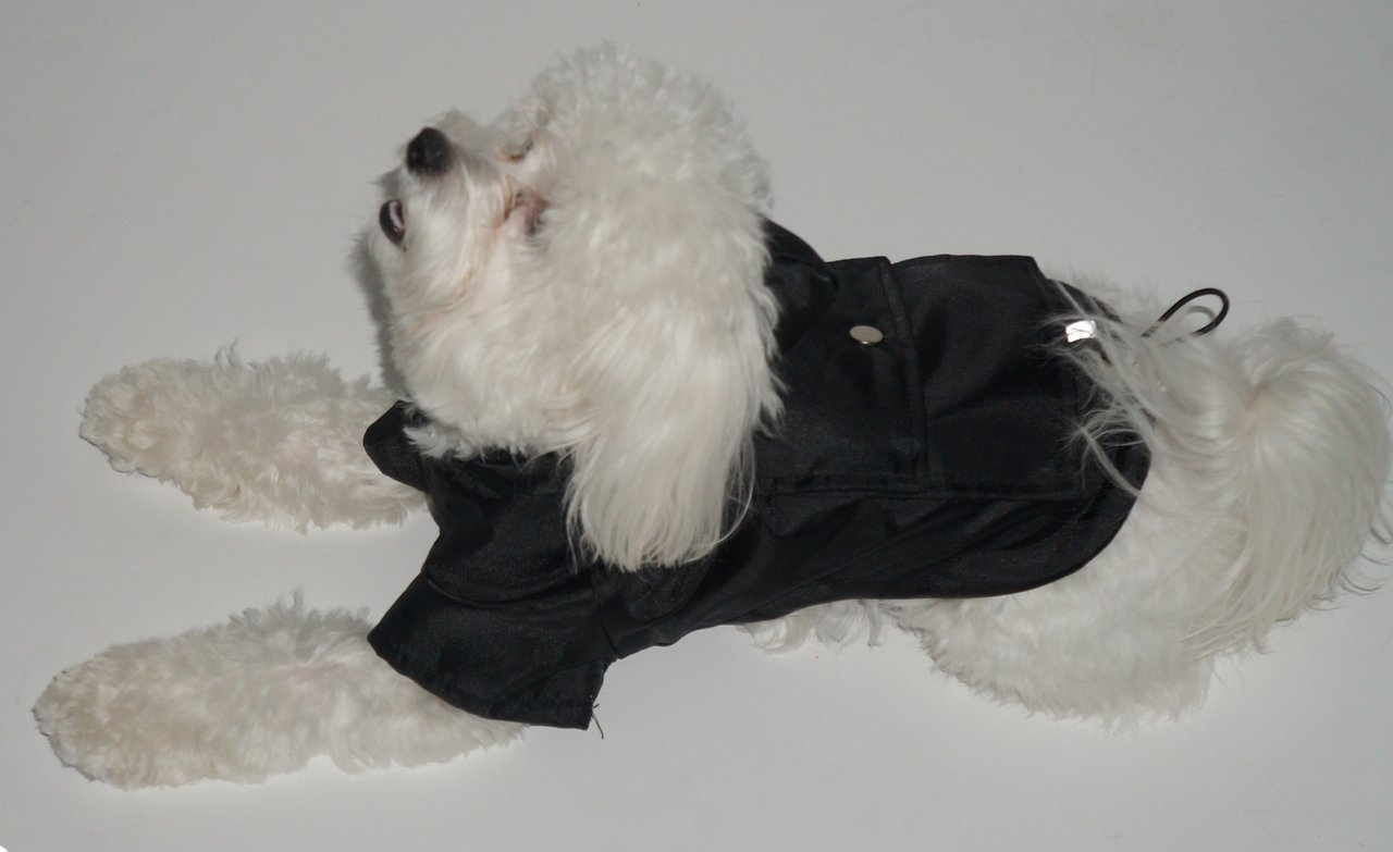 Royal Animals Rain Coat, Water Resistant and Reflective Strip with Hood, Small, Black