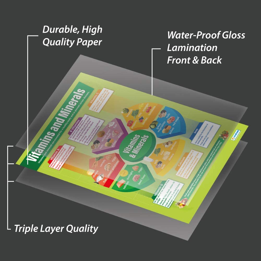 A1 Vitamins and Minerals Gloss Paper measuring 850mm x 594mm Education Charts by Daydream Education | Design and Technology Classroom Posters Design /& Technology Posters