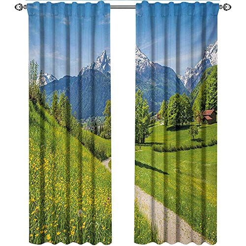 Landscape, Curtains Decoration, Wildflowers in The Alps and Snow Capped Mountains National Park Bavaria Germany, Curtains for Bathroom, W108 x L96 Inch, Yellow Green