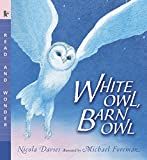 img - for White Owl, Barn Owl: Read and Wonder book / textbook / text book