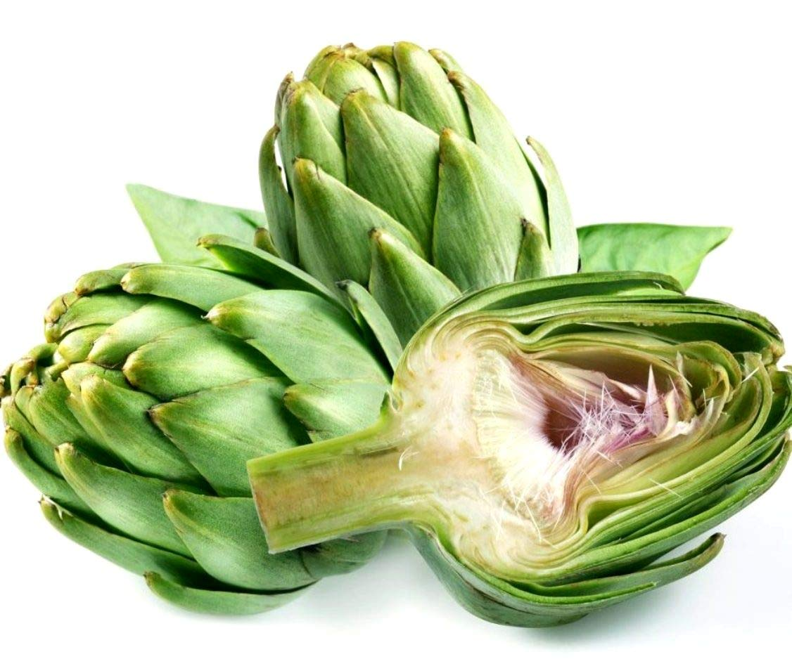 Green Globe Artichoke Seeds Many Size Choices for Growing Heirloom Edible Flower bin112 (9600 Seeds, or 1 Pound)