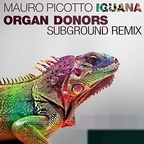 Mauro Picotto - Iguana (Special Mixes)