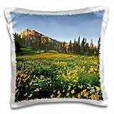 Danita Delimont - Utah - Willard Basin, Uinta-Wasatch-Cache, Utah, USA - US45 HGA0462 - Howie Garber - 16x16 inch Pillow Case (pc_147347_1)